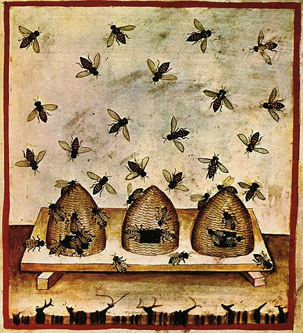 Beekeeping, tacuinum sanitatis casanatensis (14th century)