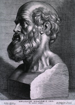 Hippocrates_rubens.jpg