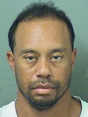 tiger_woods_mugshot